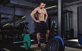 Bench Squat Deadlift 10 Reasons Why You Should Never Bench Squat U0026 Deadlift Muscle