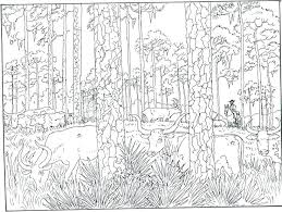 free coloring page of the rainforest rainforest coloring page coloring pages printable best images on