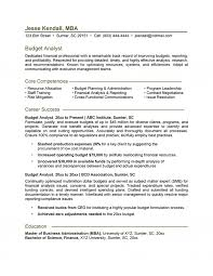 Resume Core Qualifications Examples by Analyst Resume