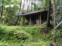 garden inside house file house inside areca garden at kabbinale india jpg wikipedia