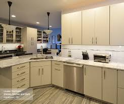 Grey Cabinets In Kitchen Modern Kitchen With Light Grey Cabinets Omega