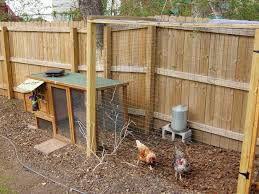 Burke Backyard Chicken Coop Small Backyard 7 Chicken Coops For Small Spaces Burke