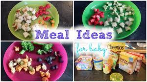 New Dinner Recipe Ideas Meal Ideas For Baby Mickisamom Youtube
