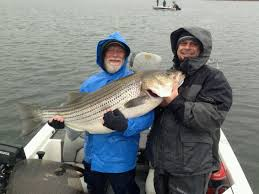 santee cooper fishing guides lake russell fishing news and report updated dec 3 u2013 angler u0027s
