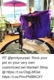 Customized Memes - rt rock your pet on your very own customized pet blanket shop