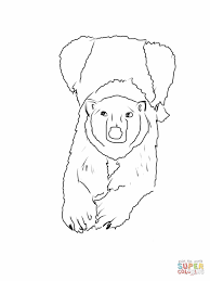 mother polar bear lying down and facing us coloring page free