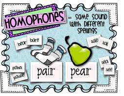 homophone homograph posters pdf teach me how to spell