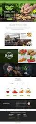 Business Web Design Homepage by Best 20 Business Website Templates Ideas On Pinterest Website