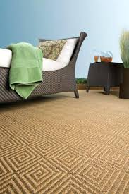 Synthetic Sisal Area Rugs New Indoor Outdoor Sisal Look Rugs Synthetic Rug My