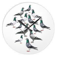 cuisine des pigeons voyageurs horloge cuisine avec collage des pigeons voyageur zazzle ca
