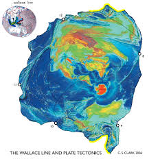Map Of Tectonic Plates Earth Tectonic Maps World Maps With Constant Scale Natural