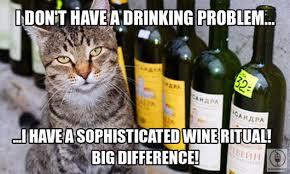 Cat Problems Meme - wine cat problems blog your wine
