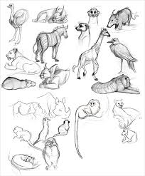 animal drawings u2013 25 free psd ai vector eps format download