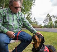 service dogs help iraq war veteran in wyoming deal with ptsd