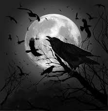 halloween black birds raven moon u2026 pinteres u2026