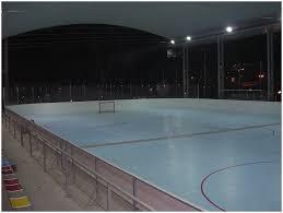 backyards superb backyard hockey rink basketball court 97 roller