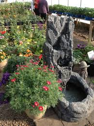 container gardening pictures posters news and videos on your