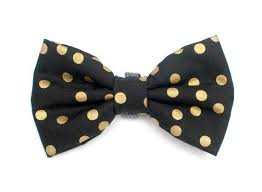 new years bow tie best 25 bow ties for dogs ideas on dog bow ties bow