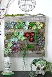 indoor wall garden systems modern and eco friendly green wall