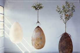 here u0027s a plan to bury corpses in pods grow trees new york post