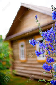 wooden country house with front garden flowers in a focus small wooden country house with front garden flowers in a focus small grip stock photo