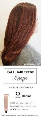 hair color formula 2016 fall winter hair color trends guide cabelo colorido cabelo