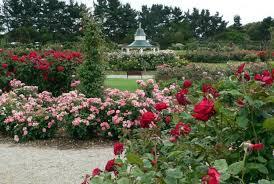 Most Beautiful Gardens In The World Zakir Hussain Rose Garden India 9 Most Beautiful Gardens In The