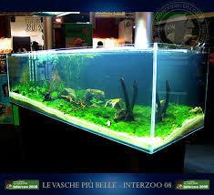 vasche acquario gli acquari pi禮 belli di interzoo 2008