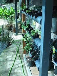 Watering Vertical Gardens - self watering vertical garden ordinary 2 extraordinary