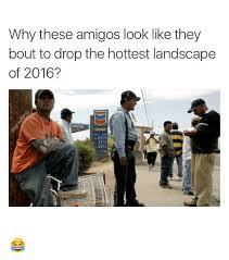 Landscaping Memes - why these amigos look like they bout to drop the hottest landscape