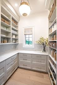 light wood kitchen pantry cabinet 14 smart pantry design ideas from kitchen experts