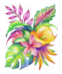 tropical rainforest native plants abstract tropical leaves and flowers jungle plants watercolor