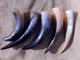 horns for sale viking horns for sale viking horns