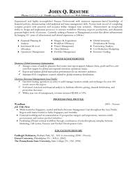 Simple Professional Resume Template Professional Resume Template Free Resume Template And