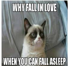 Grumpy Cat Coma Meme - best 25 grumpy cat valentines ideas on pinterest grumpy cat
