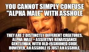 Alpha Meme - the problem with the alpha male alyne hart novels