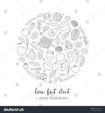 foods weight loss low fat diet stock vector 395327923 shutterstock