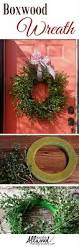 my homemade boxwood wreath what worked and what didn u0027t