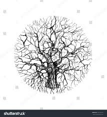 holistic tree sketch black white pencil stock illustration