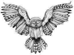 Patterned Flying Owl Drawing Illustration Owl Line Drawing Tattoos Owl And Draw