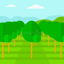Fruit Tree Garden Layout Background Of Garden With Fruit Trees Stock Vector Illustration