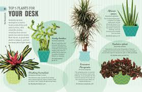 Plants For Desk How Not To Kill Your Houseplant Survival Tips For The