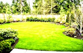 Inexpensive Backyard Landscaping Ideas Simple Easy Backyard Modern House Design Homes Small Landscaping
