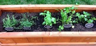 Box Garden Layout Vegetable And Herb Garden Layout My Raised Vegetable Garden