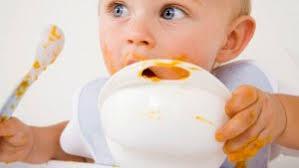 bimbo 13 mesi alimentazione lo svezzamento vegetariano consigli pediatra