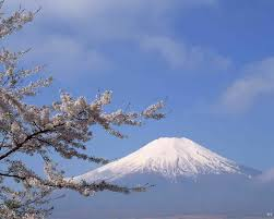 japanese mountain with blossom tree deskpapers