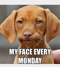 Monday Meme Images - 59 monday meme pictures to try and make your weekend longer