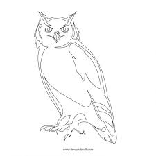 free printable owl pumpkin template picture coloring pages baby
