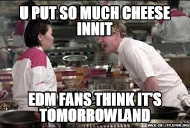 Chef Gordon Ramsay Memes - littlefun angry chef gordon ramsay u put so much cheese innit