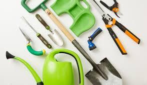 short on green space easy indoor gardening essentials bhg com shop